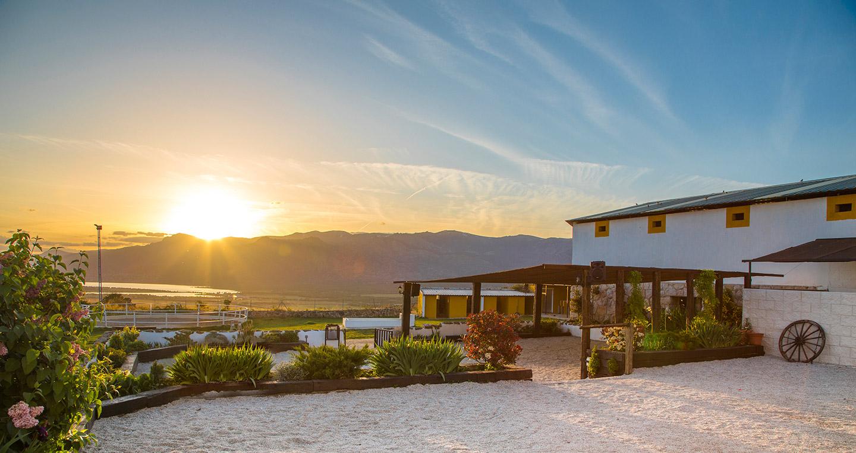 Experiencia Adultos Standard - Restaurante Sierra Madrid | VISTAS REALES